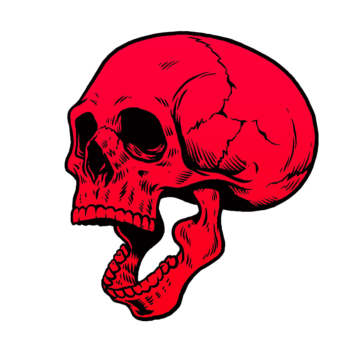 Help us solve the mystery of our missing skulls this Halloween